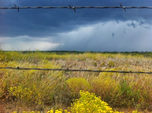 Don Verger captures a field and menacing clouds.