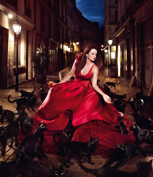 penelope cruz campari_ january cats