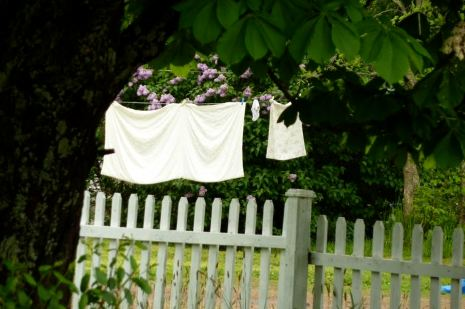 newfoundland washing line