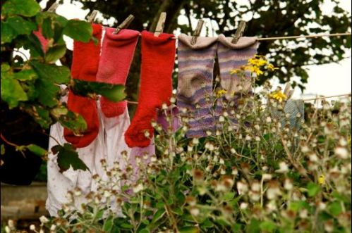 washing line_socks