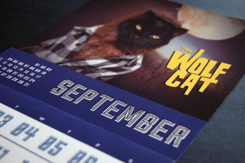 katie funk wolf cat calendar