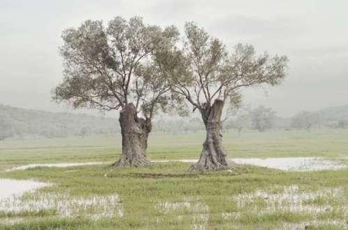 petros koublis landscape photography 1