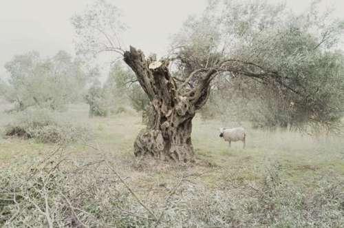 petros koublis landscape photography 2