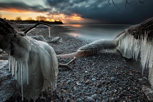 timothy corbin_frozen tree photography 4