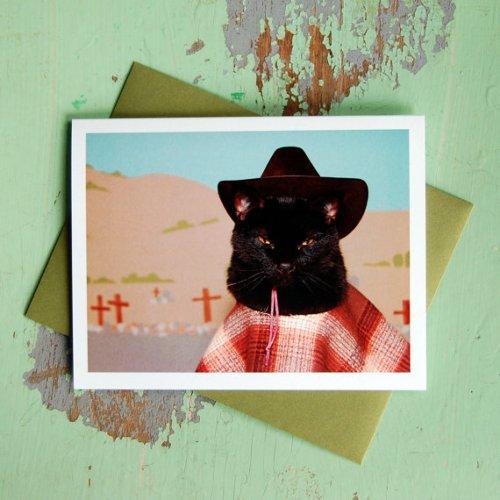 kate funk cat eastwood