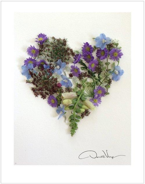 violet flower heart